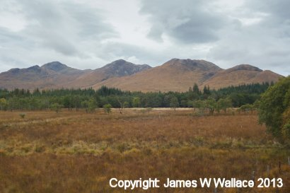Fort William - Mallaig railway views - 4